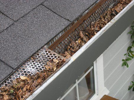 The Importance of Clean Gutters